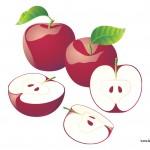 apple puzzle 1