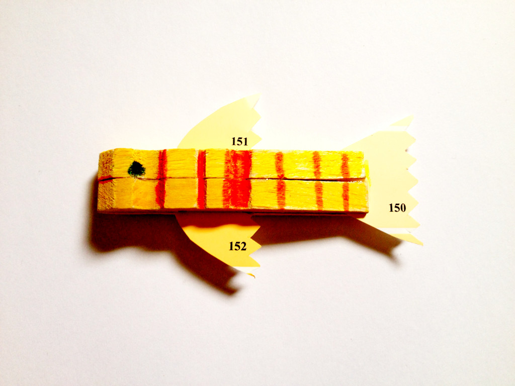 paint chip fish
